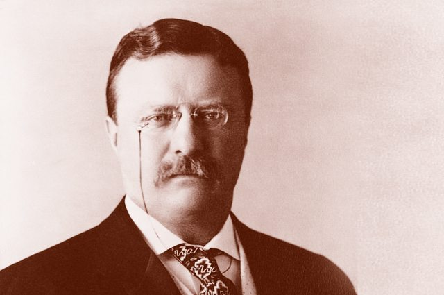 Theodore Roosevelt - Legends Report
