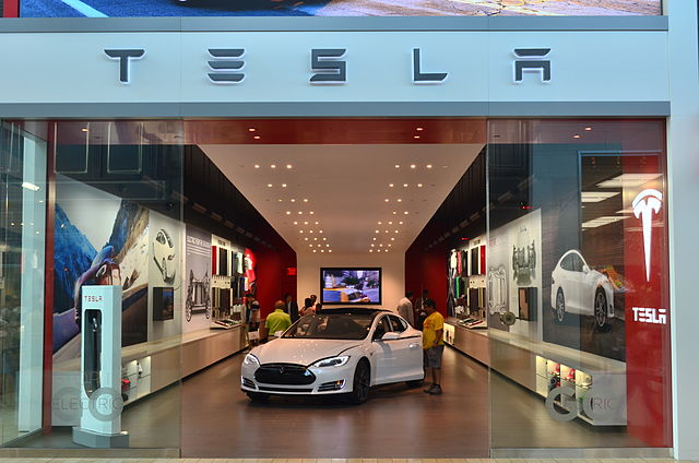 Learning From Tesla - Why Do You Work for Your Company?