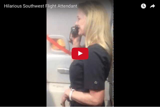 FUNNY! The Hilarious Single-Mom Flight Attendant Gets A Deserved Reward!