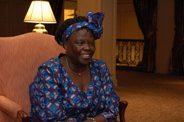 Wangari Maathai - The Incredible Story of The Woman Who Changed Kenya