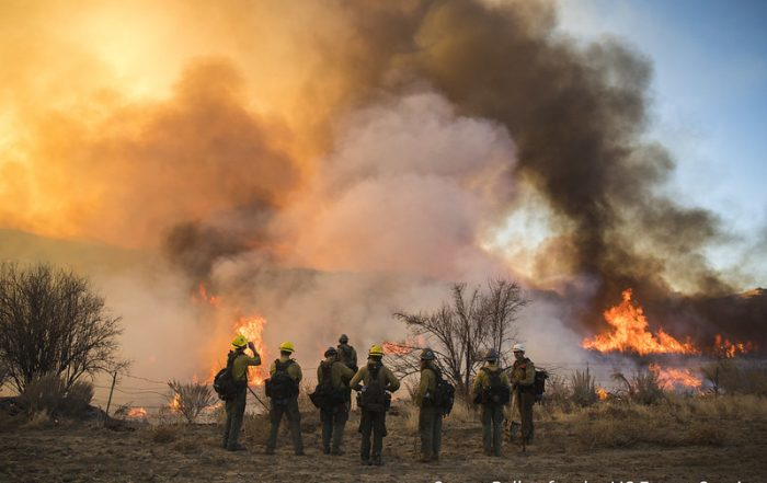 Major forest fire in Thomas, US