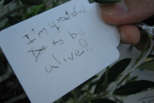 """Writing on card tag """"I'm grateful to be alive!"""""""