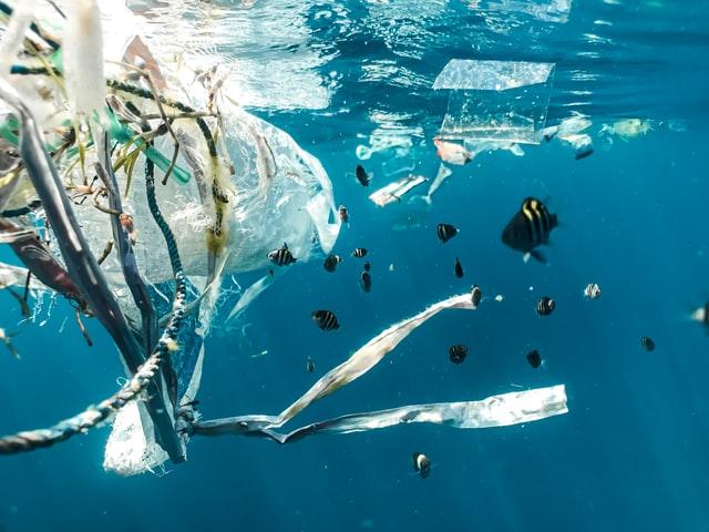 Plastic waste Sea